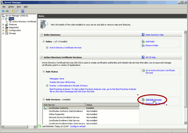 'Add role service' window (Windows 2008)